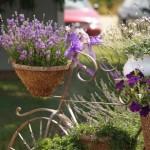 bahçe-dekorasyon-fikirleri