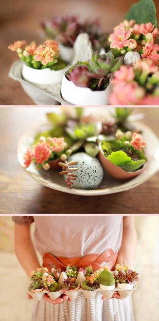 Yumurta Kabuklarına Çiçekler Ekin!
