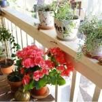 Yaz İçin Balkon Dekorasyonu