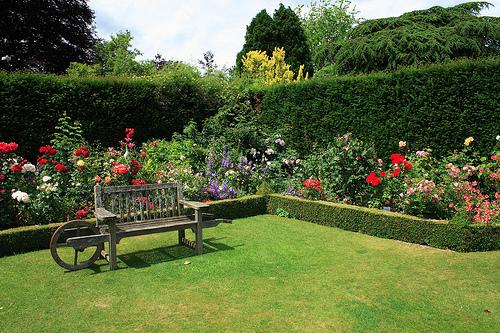 Bahçe Düzenlemesi İçin Öneriler