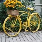 Eski Bisikletten Saksı