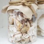 Dekoratif Deniz Kabuğu