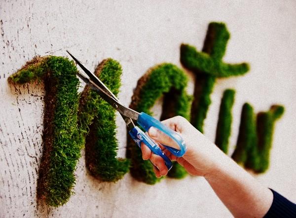 Bitki grafiti