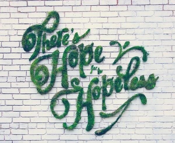 Bitkisel Grafiti
