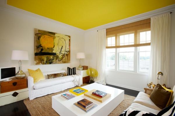 Tavanı Renkli Boyamak