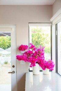 Dekorasyon Çiçekleri