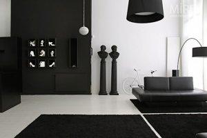 Siyah Beyaz Dekorasasyon