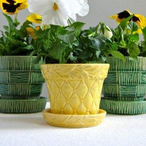 sari-renk-porselen-cicek-saksisi